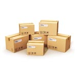 Efficient & Cost Effective Shipping